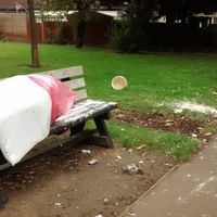 Fly tipping at the end of Buckby